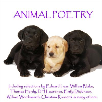 ISBN 9781780000107 product image for The Poetry of Animals - Download   upcitemdb.com